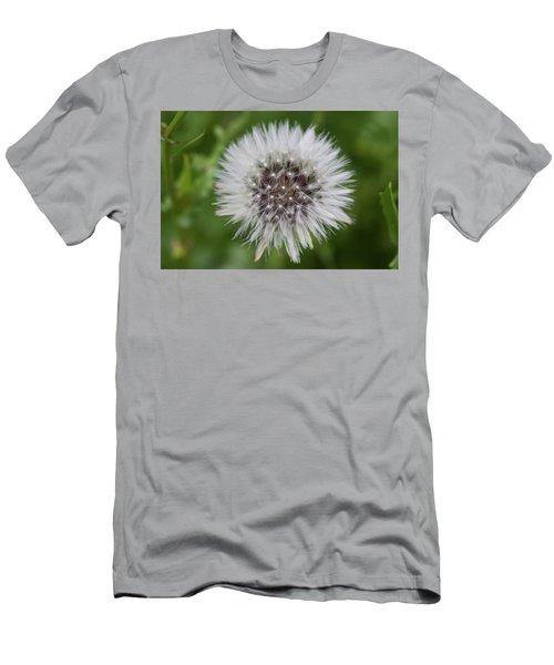 Dandelions Men's T-Shirt (Athletic Fit)