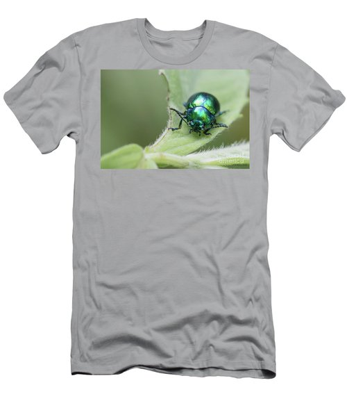 Dead-nettle Leaf Beetle - Chrysolina Fastuosa Men's T-Shirt (Slim Fit) by Jivko Nakev