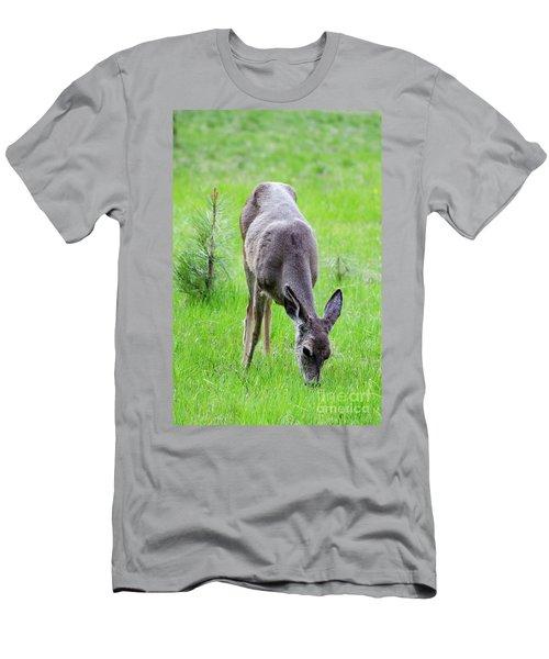 Deer In The Field Men's T-Shirt (Slim Fit) by Debby Pueschel