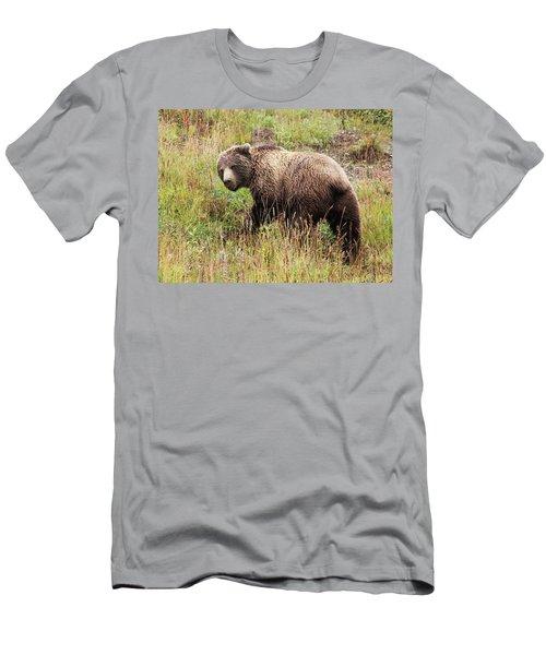 Denali Grizzly Men's T-Shirt (Athletic Fit)