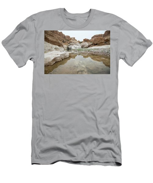Desert Water Men's T-Shirt (Athletic Fit)
