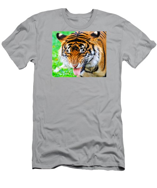 Disgusted Tiger Men's T-Shirt (Athletic Fit)