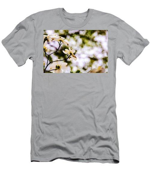 Dogwoods Under The Pines Men's T-Shirt (Slim Fit) by John Harding