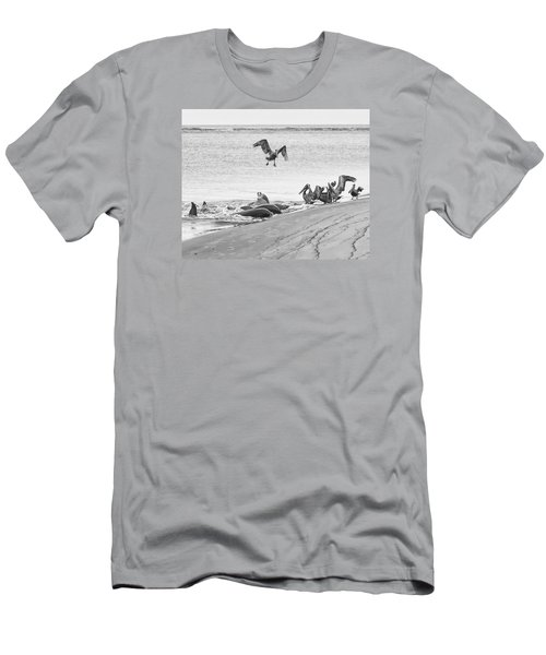 Men's T-Shirt (Slim Fit) featuring the photograph Dolphin And Pelican Party by Patricia Schaefer