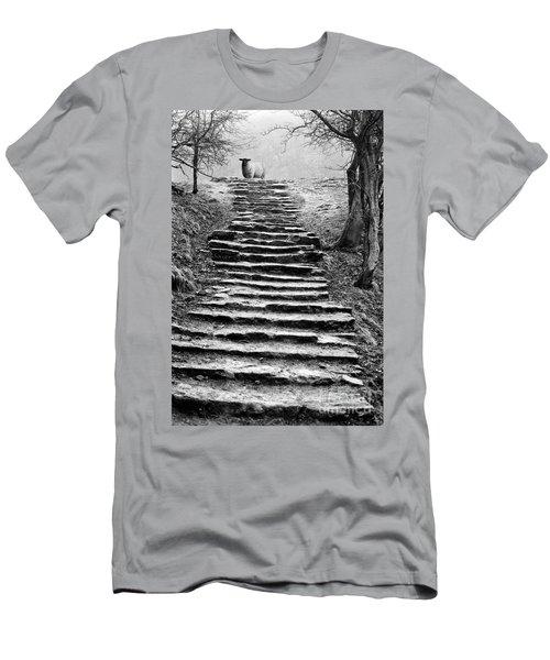 Dovedale Steps Men's T-Shirt (Athletic Fit)