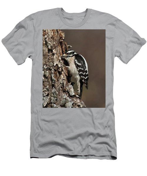 Downy Woodpecker's Secret Stash Men's T-Shirt (Athletic Fit)