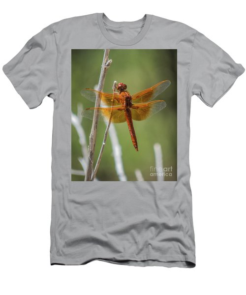 Dragonfly 10 Men's T-Shirt (Athletic Fit)