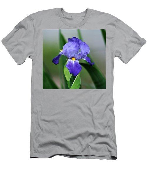 Dwarf Iris 9834_2 Men's T-Shirt (Athletic Fit)