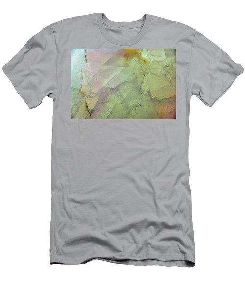 Earth Portrait 284 Men's T-Shirt (Athletic Fit)