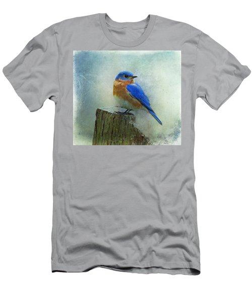 Eastern Bluebird II Men's T-Shirt (Slim Fit) by Sandy Keeton