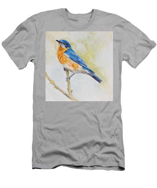 Eastern Mountain Bluebird Men's T-Shirt (Athletic Fit)
