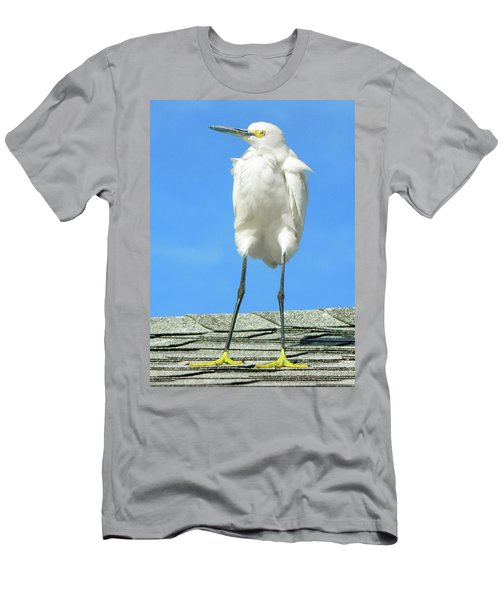 Egret Focused And Poised Men's T-Shirt (Athletic Fit)