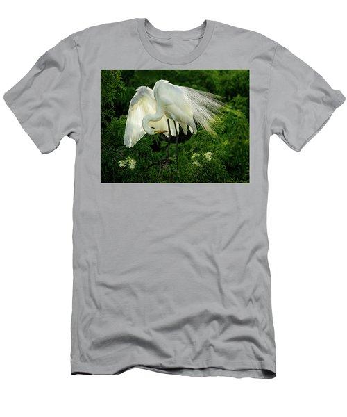 Egret Preening Men's T-Shirt (Athletic Fit)