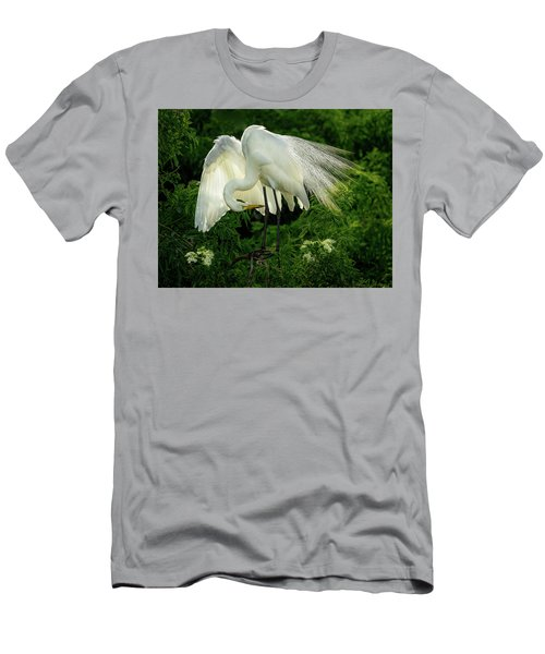 Egret Preening Men's T-Shirt (Athletic Fit)
