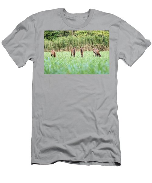 Elk Calves Men's T-Shirt (Athletic Fit)
