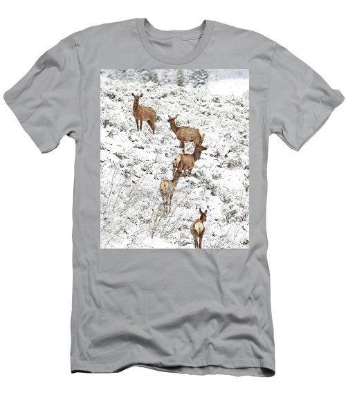Elk Cows In Snow Men's T-Shirt (Athletic Fit)