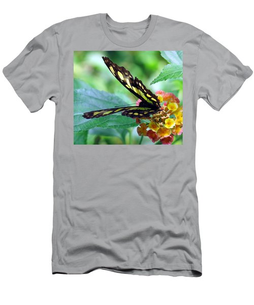 Elusive Butterfly Men's T-Shirt (Slim Fit) by Betty Buller Whitehead