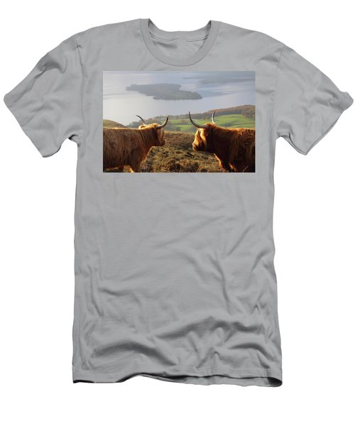 Enjoying The View - Highland Cattle Men's T-Shirt (Athletic Fit)
