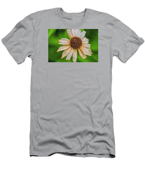 Faded Cone Flower Men's T-Shirt (Slim Fit) by Tom Singleton