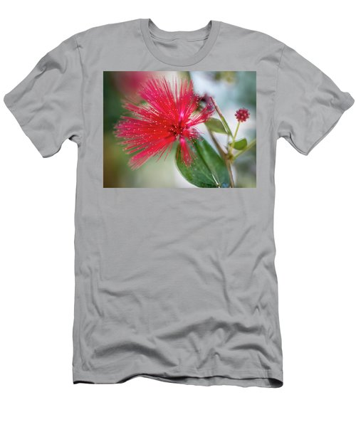 Fairy Duster Men's T-Shirt (Athletic Fit)