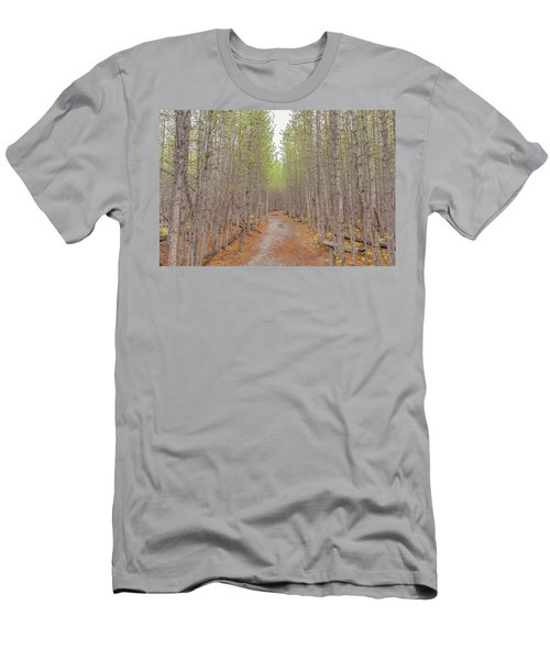 Fall Aspen Trail  Men's T-Shirt (Athletic Fit)
