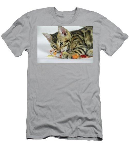 Fall Kitten Men's T-Shirt (Athletic Fit)