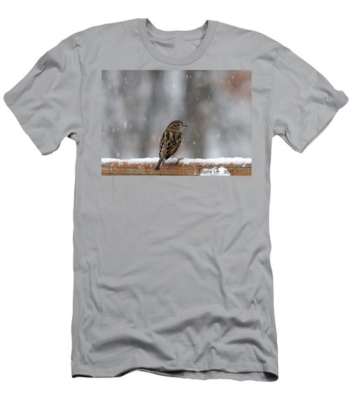 Female Sparrow In Snow Men's T-Shirt (Athletic Fit)