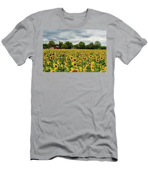 Field Of Sunshine Men's T-Shirt (Athletic Fit)