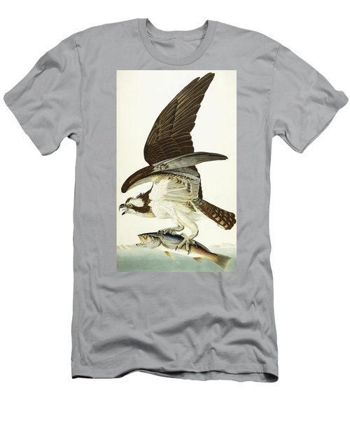 Fish Hawk Men's T-Shirt (Slim Fit) by John James Audubon