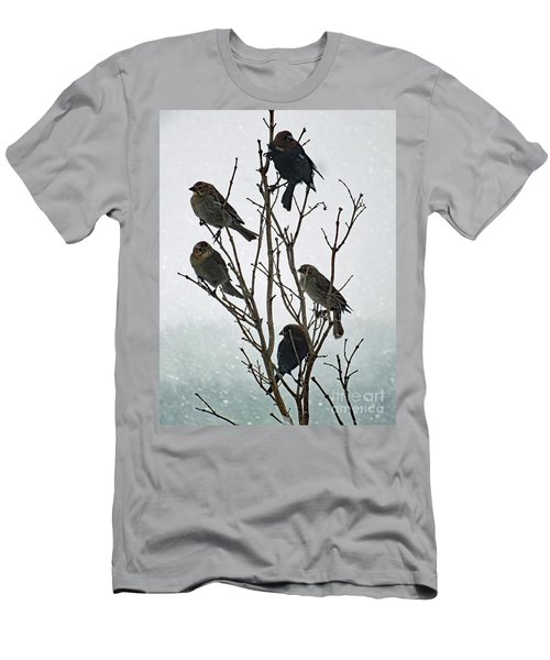 Five Cowbirds Sitting In A Tree Men's T-Shirt (Athletic Fit)
