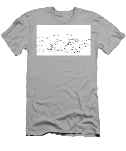 Flock Of Beautiful Migratory Lapwing Birds In Clear Winter Sky I Men's T-Shirt (Athletic Fit)