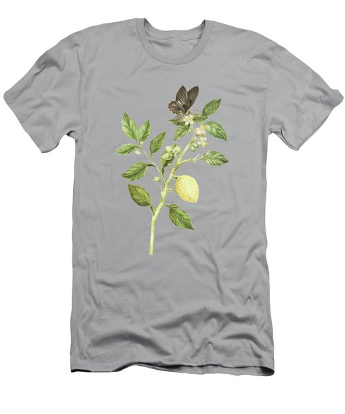 Flowering Branch Of Lemon Tree Fruit And Butterfly By Cornelis Markee 1763 Men's T-Shirt (Athletic Fit)