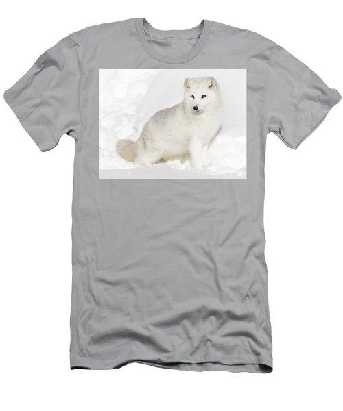 Fluffy Arctic White Fox Men's T-Shirt (Athletic Fit)