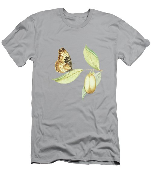 Flying Butterfly On A Anena Leaf By  Cornelis Markee 1763 Men's T-Shirt (Athletic Fit)