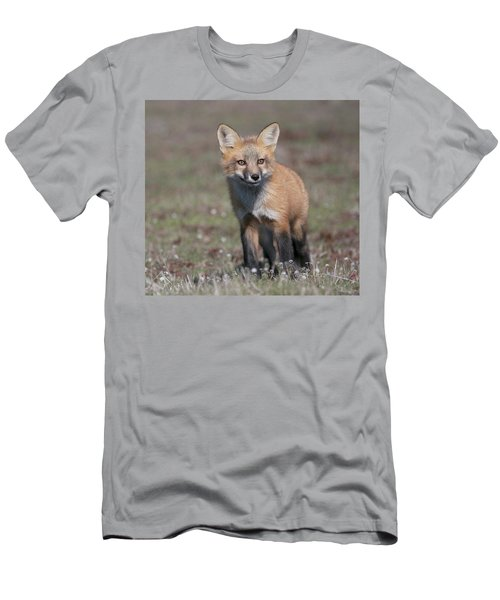 Fox Kit Men's T-Shirt (Slim Fit) by Elvira Butler