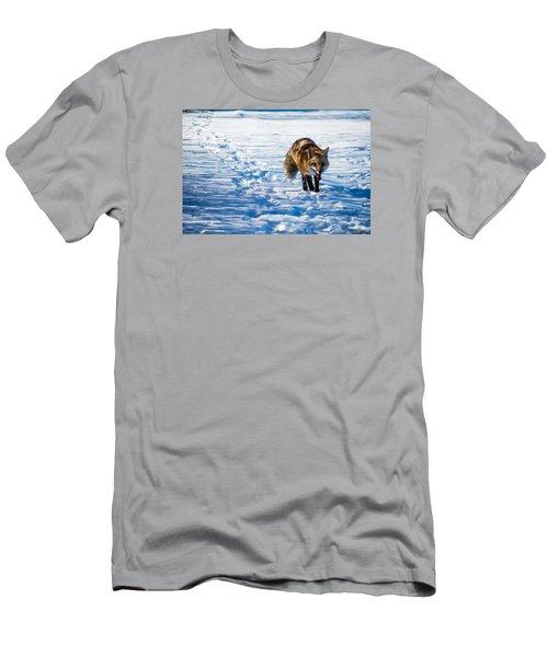 Fox Path Men's T-Shirt (Athletic Fit)