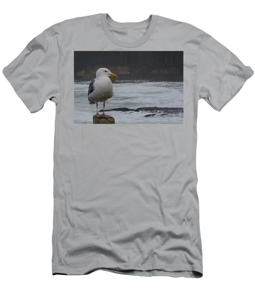 Friendly Seagull Men's T-Shirt (Athletic Fit)