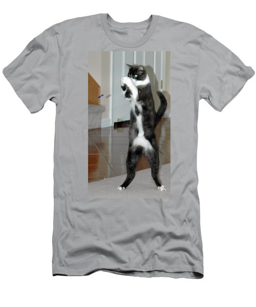 Frisbee Cat Men's T-Shirt (Athletic Fit)