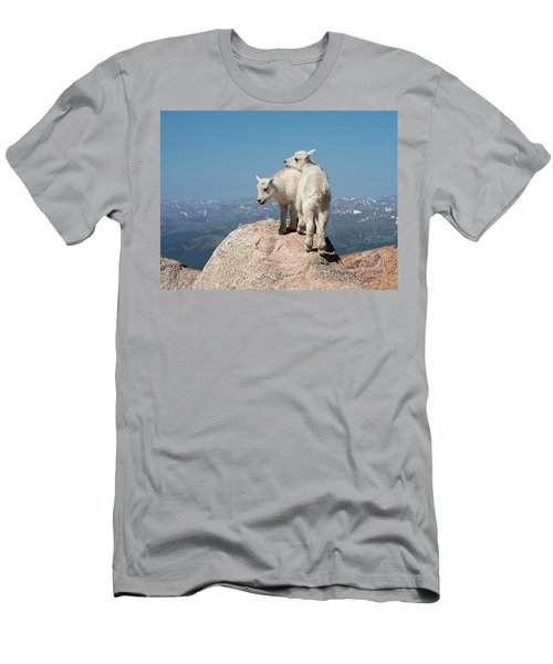 Frisky Mountain Goat Babies Men's T-Shirt (Athletic Fit)
