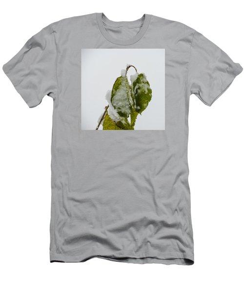 Frosty Green Leaves Men's T-Shirt (Slim Fit) by Deborah Smolinske