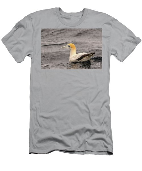 Gannet 5 Men's T-Shirt (Athletic Fit)