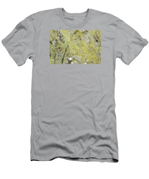 Gentle Weeds Men's T-Shirt (Slim Fit) by Deborah  Crew-Johnson