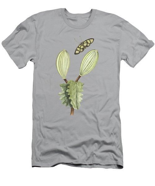 Gitte Gom Plant With Fruit And Butterfly By Cornelis Markee 1763 Men's T-Shirt (Athletic Fit)
