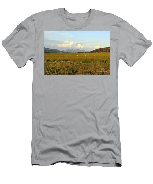 Glowing Meadow Men's T-Shirt (Athletic Fit)