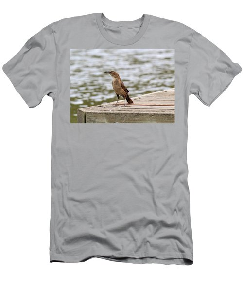 Grackle On A Dock Men's T-Shirt (Athletic Fit)