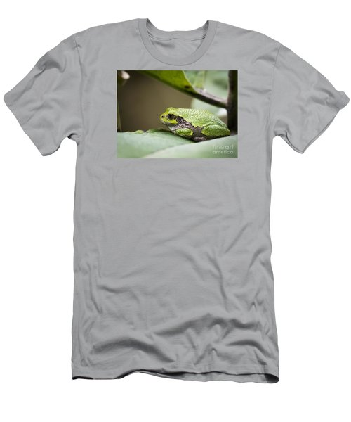 Men's T-Shirt (Slim Fit) featuring the photograph Gray Tree Frog - North American Tree Frog by Ricky L Jones