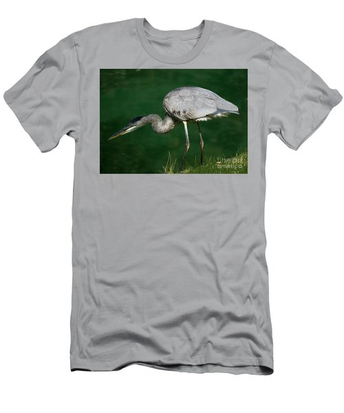 Great Blue Heron Series Men's T-Shirt (Athletic Fit)
