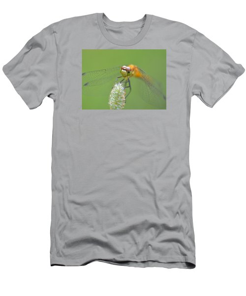 Green Angles Men's T-Shirt (Slim Fit) by Janet Rockburn