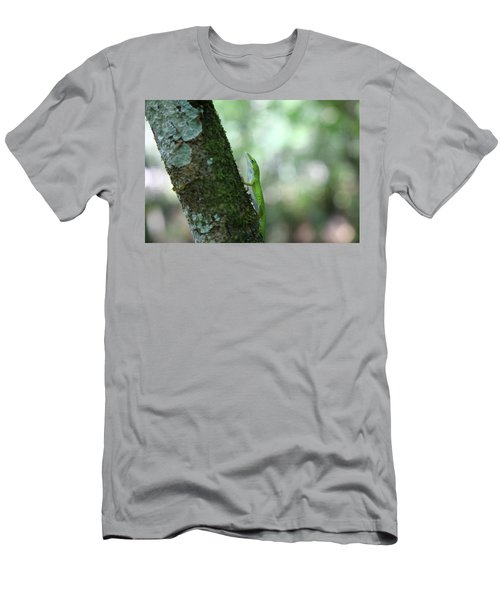 Green Anole Climbing Men's T-Shirt (Athletic Fit)