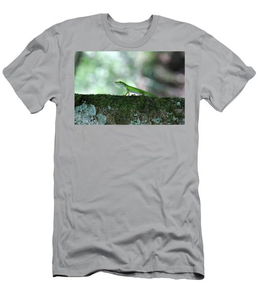 Green Anole Posing Men's T-Shirt (Athletic Fit)